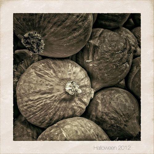 Last Exit to Halloween | #halloween #pumpkin #bestoftheday #all_shots #nature #snapseed #camera+ #jj #jj_forum #blackandwhite #bnw #bw #monochrom #noir #simplyb&w #blancoynegro #baw #blacknwhite #hamburg #germany #2012 2012 Bw Mono_monday Hamburg Blacknwhite Bnw Pumpkin Monochrom Snapseed Blancoynegro Nature All_shots Camera Bestoftheday Noir Baw Blackandwhite Jj  Germany Jj_forum Halloween Simplyb