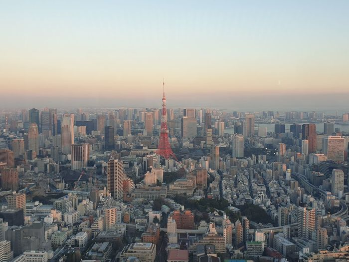 Tokyo top view with iconic tokyo tower