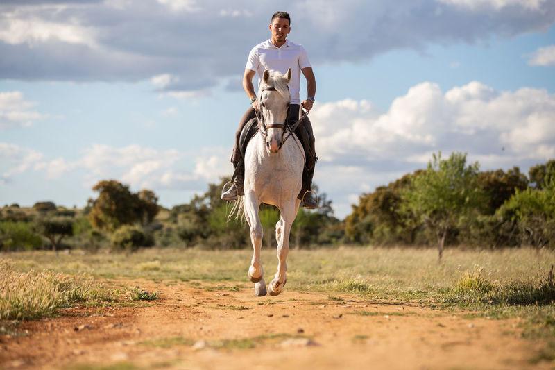 Man riding horse on field