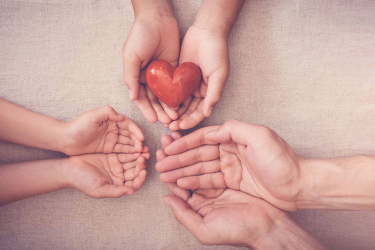 hands and red heart, health insurance, donation and charity concept Donate Charity Give Back Organ Heart Health Family Responsibility Corporate Social CSR Insurance Hands Holding Children Love Day Hope Care Concept Help Red SUPPORT Life Donor Awareness Blood World Symbol People Compassion Human Hand