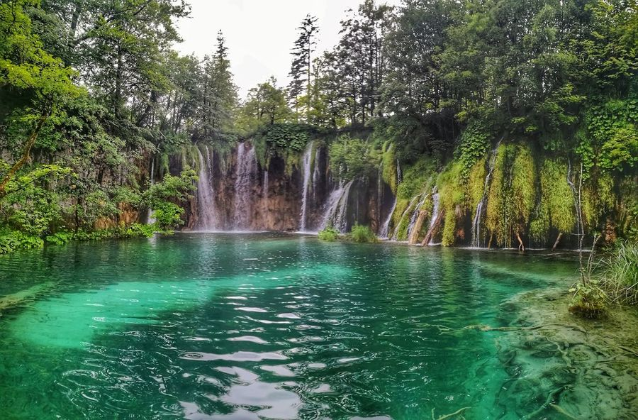 Water Tree Green Color Nature Motion Spraying Outdoors Day Beauty In Nature No People Freshness EyeEmNewHere