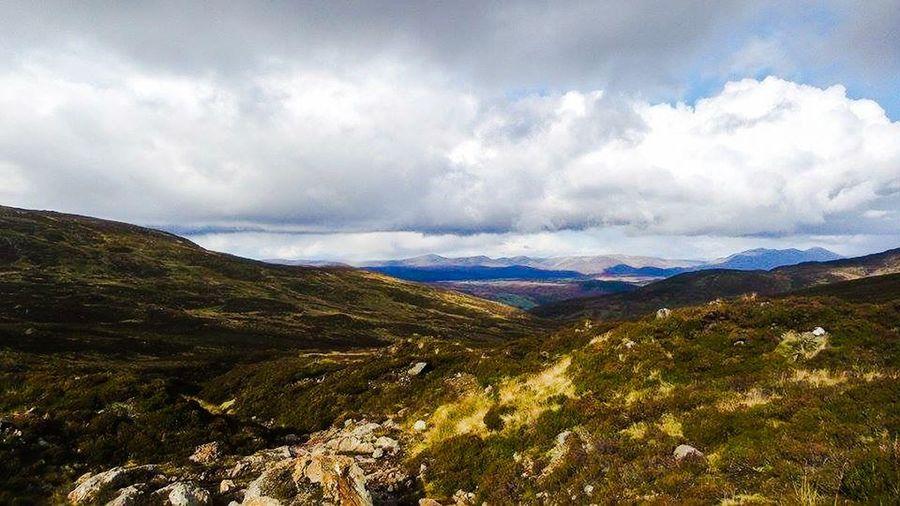 First Eyeem Photo Highlands Scotland Cairngorms Taking Photos Loving Life! Relaxing Beautiful Nature My Homeland
