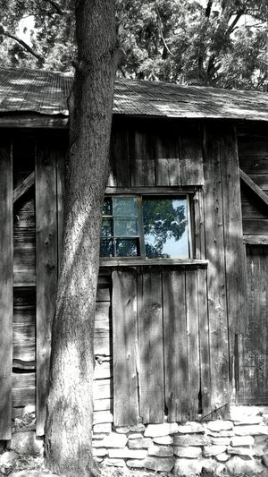 Old Barn Old House Trees Wood Wooden Texture Blackandwhite Blackandwhite Photography Colorsplash Reflections.  From My Point Of View Interesting Taking Photos Texture Nobody