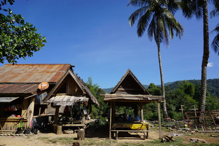 Laos Tree Blue Agriculture Sky Architecture Residential Structure Palm Tree Thatched Roof Palm Leaf Roof Coconut Palm Tree Farmland Tiled Roof  Stilt House Rooftop Frond Stilt Palm Frond Parasol Date Palm Tree Gazebo Roof Tile Housing Settlement Resort Fence Tropical Tree Hut