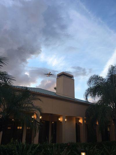 Tree Illuminated Sky No People Cloud - Sky Night Outdoors AirPlane ✈ Beautiful Night In Miami