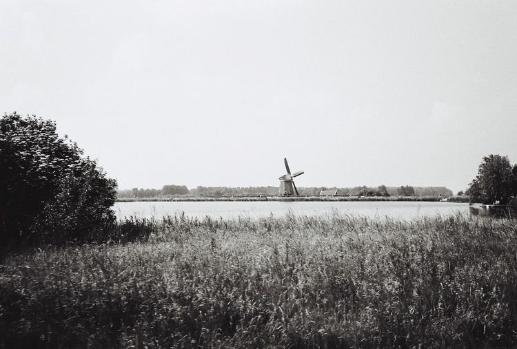 Wind Windmill Holland Field Dutch Dutch Landscape Dutch Countyside Landscape Water Amsterdam North Canal Clear Sky Film Film Photography Filmisnotdead Blackandwhite Black And White Photo Photography Field Copy Space Tranquil Scene Tranquility Nature Scenics Environmental Conservation Beauty In Nature Growth Solitude Rural Scene Day Outdoors Non-urban Scene No People Remote Distant