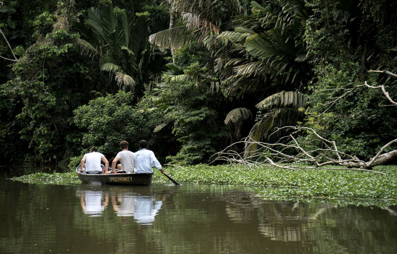 Costa Rica Beauty In Nature Boat Jungle Outdoors Real People Tree Water