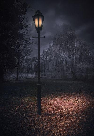 A night in the park Alone ArtWork Composition German Halloween Melancholic Landscapes Nature Paris Art Arts Culture And Entertainment Bulb Creepy Germany Glowing Lamp Night No People Outdoors Park Scenics Surrealism Been There. The Week On EyeEm