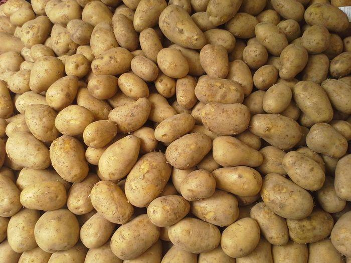 Full frame shot of organic potatoes
