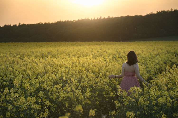 Rear view of woman walking amidst oilseed rape field against sky during sunset