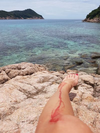 Human Leg Barefoot Personal Perspective One Woman Only Human Body Part Low Section Sea Water Wound Wounded Scratch Injury Injured Blood Cut Coral Scratch Injury At The Beach Blood Running Blood On A Leg Bleeding Knee Pain in Redang Island in Malaysia