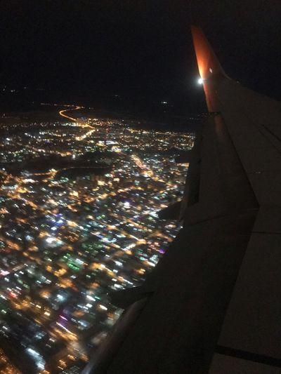 Fly Night