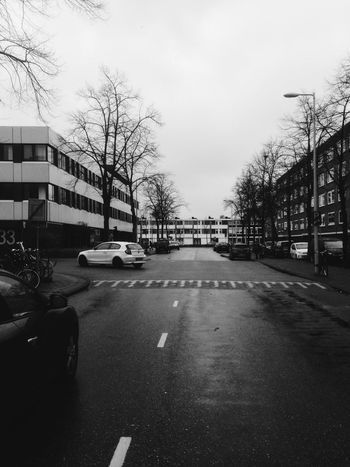 Throwbacktoiphone5 Iphonephotography Rain Amsterdamlife Cornersociety Corner Eery Stills IPhoneography Iphoneonly IPhone EyeEm Gallery EyeEmNewHere EyeEm Best Shots Blacknwhite Blackandwhite Bmw Throwback Amsterdam Citylife Car Transportation Land Vehicle Tree Architecture Road Street City Sky Day
