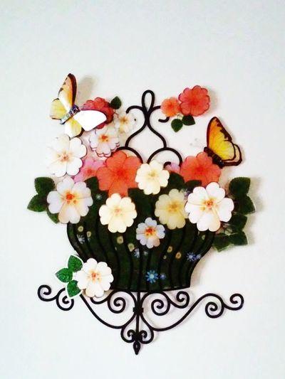 Flowerpots Wallflower EyeEm Best Shots Flowers