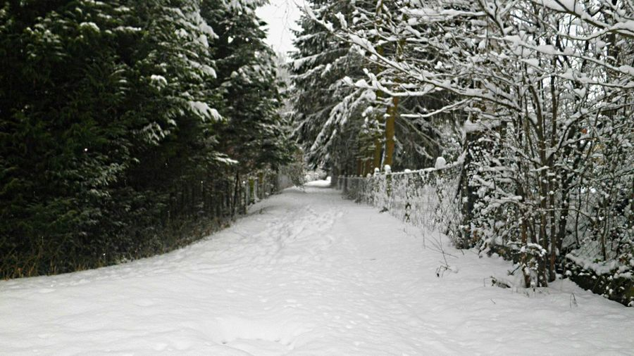 Hanging Out Taking Photos Last Winter Snow ❄ Landscape_Collection The Beauty Of Fall Twillight Twilight Seeing The Sights Places You Must To See Bruchmühlbach-Miesau Country Road On The Road Its Cold Outside White Wall