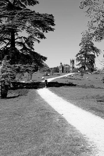 Stowe landscape