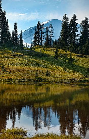 Tipsoo Lake and