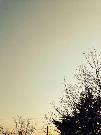 Unprocessed Sky