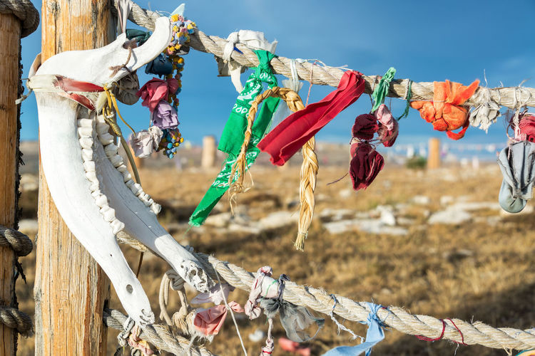 Jawbone and colorful cloth at Medicine Wheel National Historic Landmark in Wyoming American BigHorn Buffalo Grass Indian Medicine Nature Road Spirit USA View Wheel Wyoming Bone  Countryside Dirt Forest Jaw Jawbone Landscape Mountain Mountains Offering Range Sacred