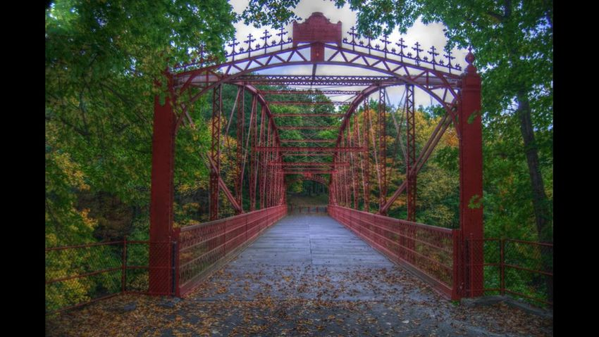 Nature Bridge Lovers Leap