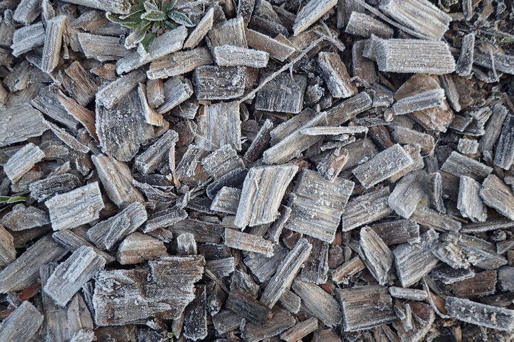 Full frame shot of frosted wood chips