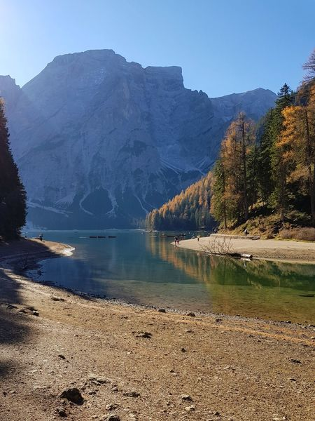 Lago Di Braies Autumn Colours Mountain Lake Landscape Pinaceae Pine Tree Outdoors Nature Tree Rock - Object Forest Wilderness Mountain Peak No People Scenics Water Day Mountain Range Snow Vacations Beauty In Nature