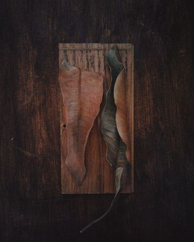 La leve maldad de la soledad. Brown Textured  Wood - Material Close-up