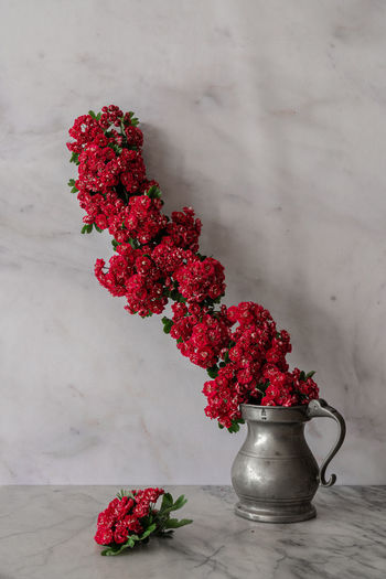 High angle view of red flowers in vase on table