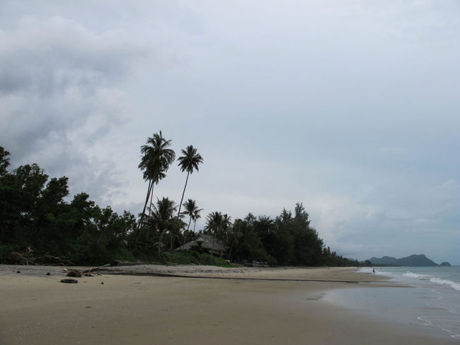 Beach Beauty In Nature Day Khanom Landscape Nature No People Outdoors Palm Tree Sand Scenics Sky Tree Water