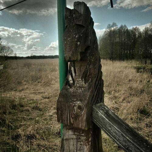 JezioroHańcza CzarnaHanczaart Bridge Art Magic Hour Journey Lake Vikings  Photography The Week On EyeEm