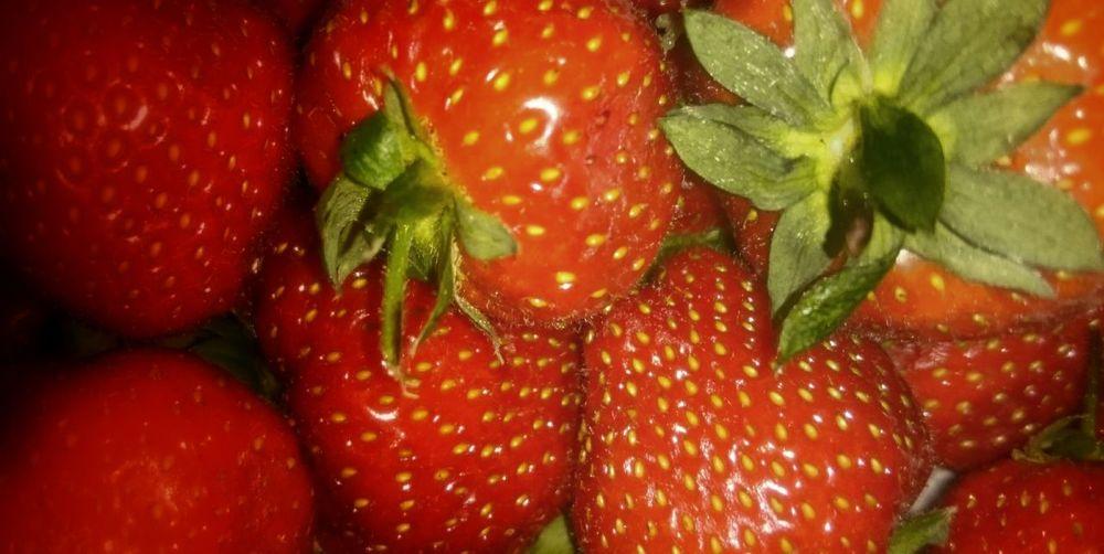 Mmmm.fruit