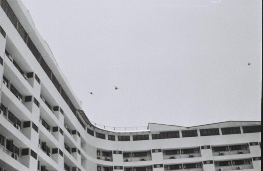 curve Film Film Photography Filmisnotdead Ishootfilm Ilford Ilfordpan100 Blackandwhite 35mm Streetphotography Olympus Om-10 Monochrome City Travel Destinations Day Outdoors Modern No People