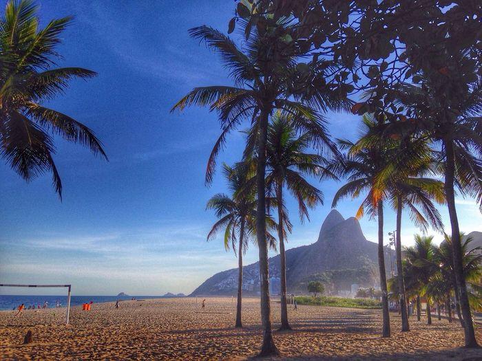 Nature Beach Ipanema Cidademaravilhosa