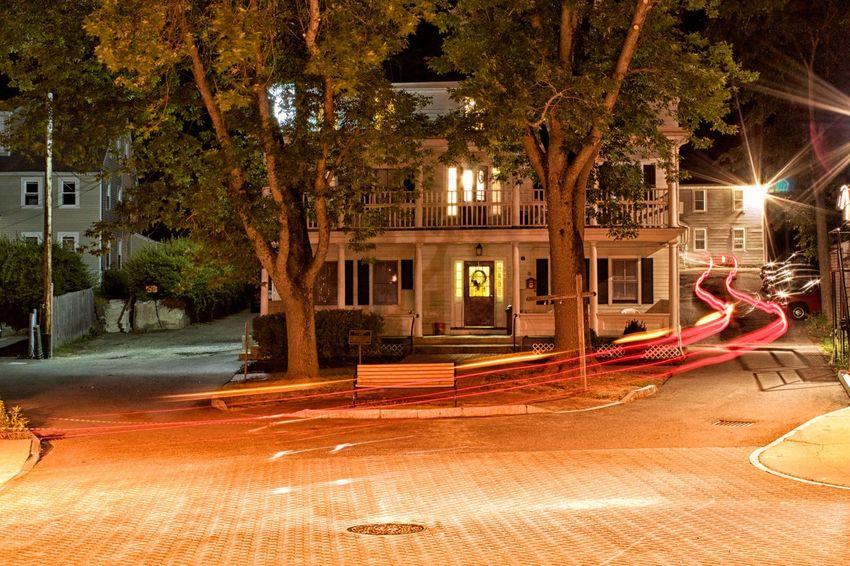 Bench Empty Illuminated Light Trails Outdoors Tree