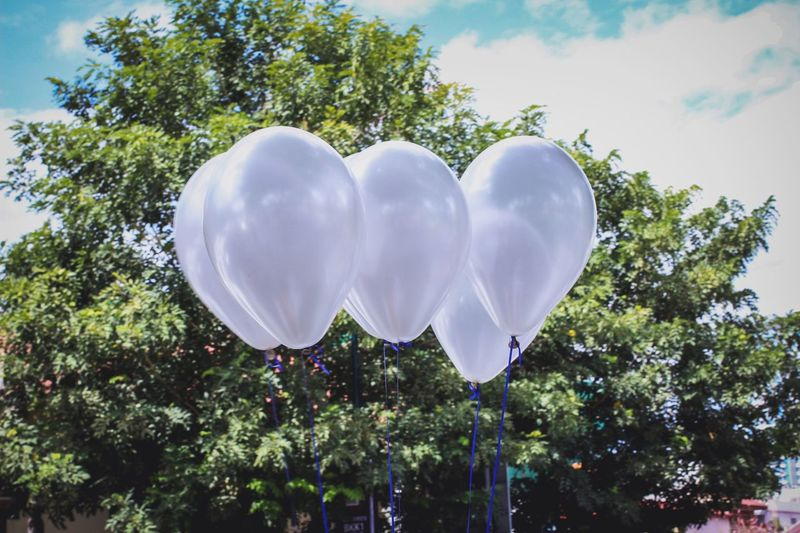 White balloons against trees