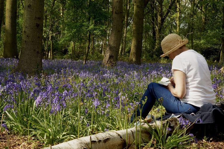 Rear view of woman sitting on purple flower field