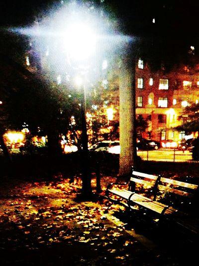 Nightphotography Walking Around Daydreaming Narnia  Spending Time Throwback True Romance
