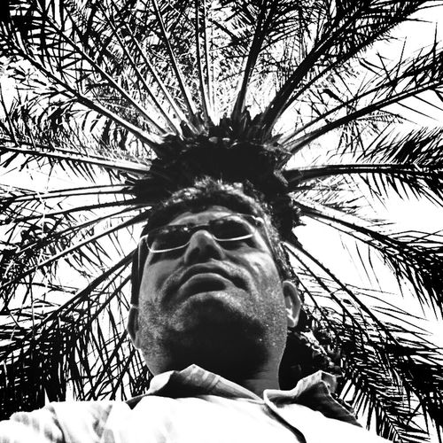 Hz339 Self Portrait Palm B&w Nature