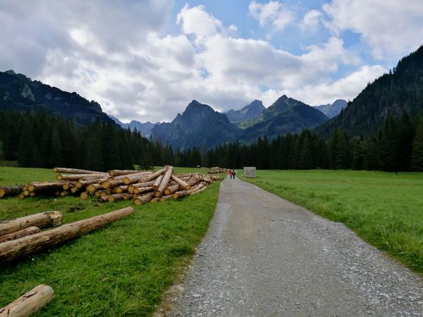 Slovakia🇸🇰 Slovakia Nature Slovaknature Cloud - Sky Pinaceae Pine Tree Tree Sky Mountain Landscape Day Grass Nature Outdoors Scenics Forest No People Beauty In Nature Tatrymountains Tatra Mountains Tatry Freshness