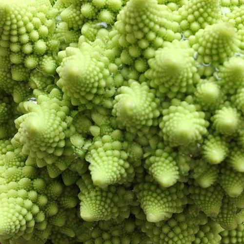 Full frame shot of fresh romanesco cauliflower