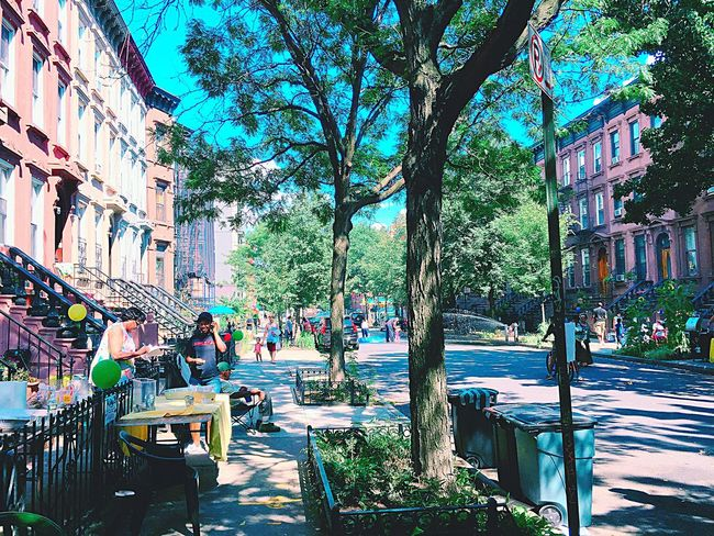 Greene ave. Block Party at 2016 Summer Blockparty Summer Brooklyn Greene Ave.