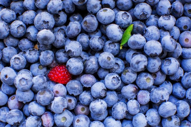 EyeEm Selects Fruit Healthy Eating Freshness Berry Fruit Food And Drink Blueberry Food Red Ripe Strawberry Organic Berry Healthy Lifestyle Raspberry Agriculture Crop  Grape Backgrounds No People Close-up