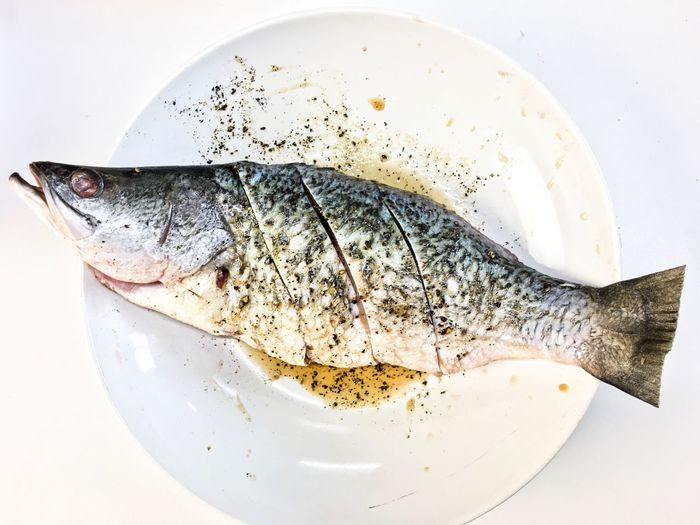 Dinner Lunch Cafe Hotel Restaurant Chef Eating Healthy Isolated White Background Kitchen Sea Bass Cooking Cooked Fish Market Food And Drink Food Plate Freshness Still Life Healthy Eating Fish Seafood Ready-to-eat Serving Size Directly Above Close-up