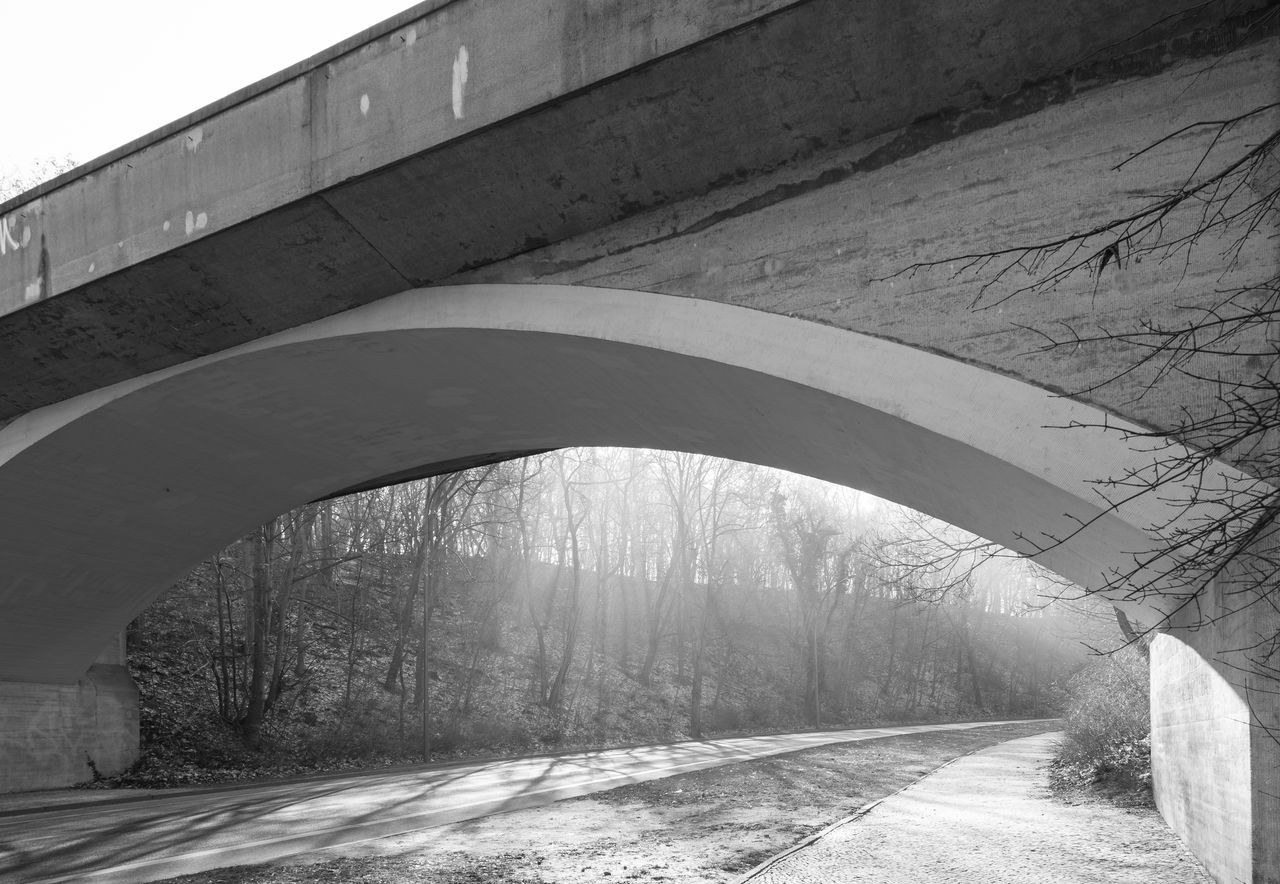 bridge - man made structure, connection, architecture, built structure, arch, day, road, outdoors, transportation, nature, tree, tunnel, the way forward, sunlight, no people, covered bridge, footbridge, sky