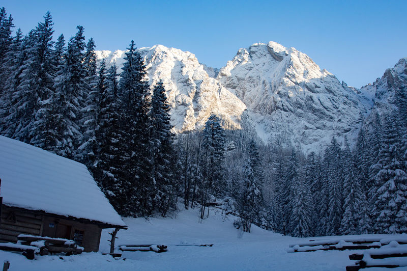 Giewont Tatra Mountains Architecture Beauty In Nature Building Exterior Built Structure Cold Temperature Covering Day Environment Mountain Mountain Range Nature No People Outdoors Pine Tree Plant Scenics - Nature Sky Snow Snowcapped Mountain Tranquil Scene Tranquility Tree White Color Winter The Great Outdoors - 2018 EyeEm Awards