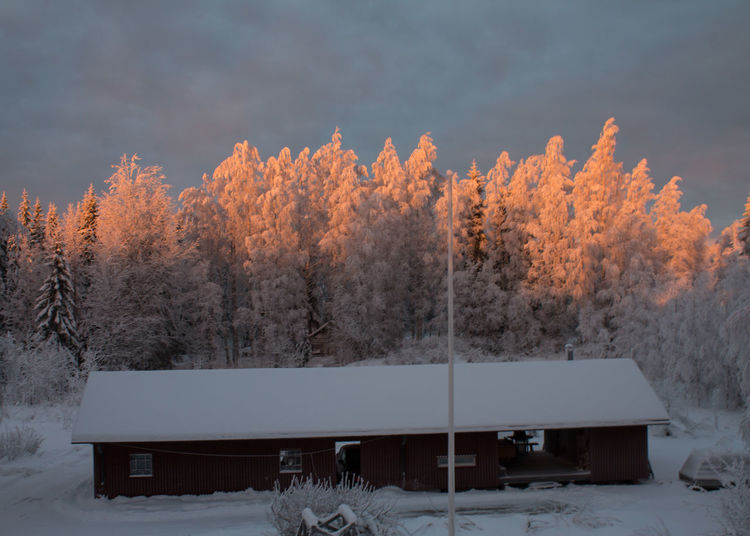 Sunlight almost reaches us. Beauty In Nature Building Cloud - Sky Cold Temperature Day Nature No People Outdoors Sky Snow Sunlight, Shades And Shadows Tree Winter