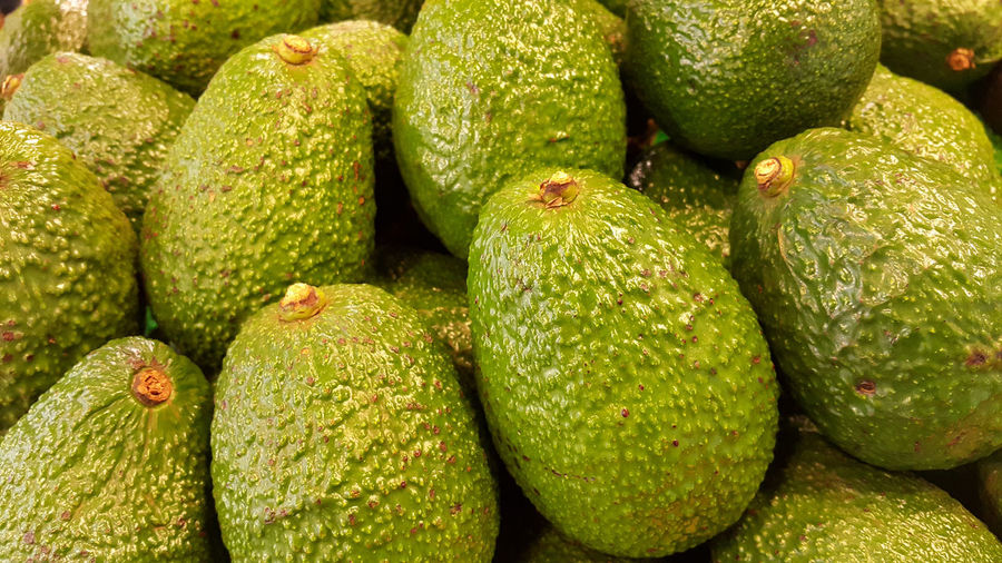 Avocado also refers to the Avocado tree's fruit, which is botanically a large berry containing a single seed. Avocados are very nutritious and contain a wide variety of nutrients. Agriculture Australia Avocado Cancer Diet Farm Food Food And Drink Fresh Fresh Produce Freshness Fruit Gluten Free Green Color Healthy Eating Market New Zealand Nutrition Nutritious Oil Organic Organic Food Research Retail  Vegetable