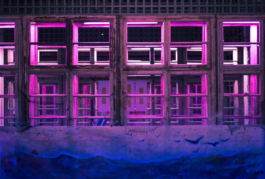 Abandoned Architecture Building Built Structure Damaged Day Entrance Full Frame Illuminated Indoors  Metal No People Pattern Pink Color Purple Reflection Side By Side Window
