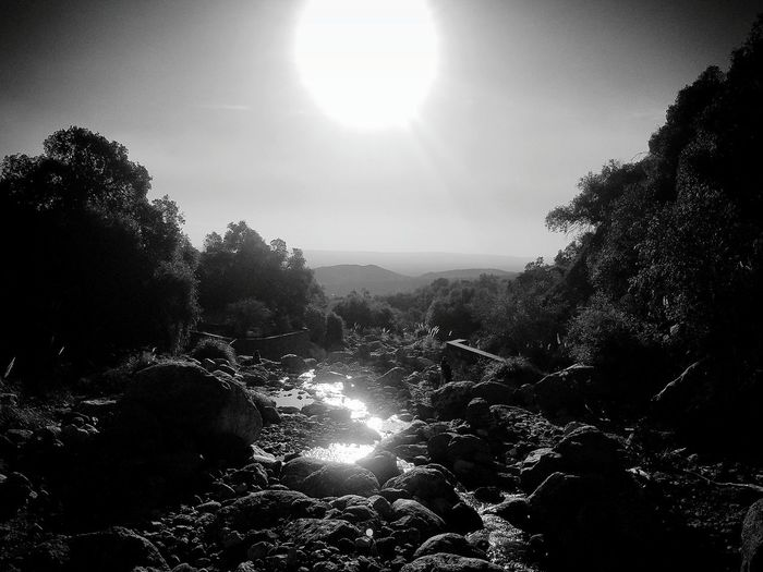 Tree No People Nature Water Day Outdoors Beauty In Nature Sky Sunlight Cabeza Del Indio Agriculture Piedrasnaturales Argentina Argentina Photography Argentina Pic Agua Y Tierra Arroyo Scenics Beauty In Nature Tranquility Nature Rock - Object Blancoynegro Blanco & Negro  Blackandwhite