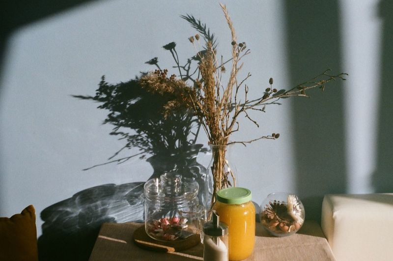Plant in vase on table at home